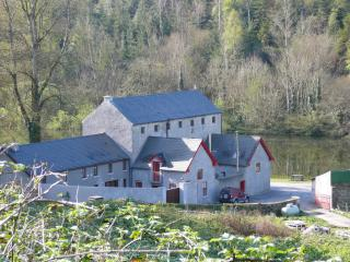 Coach House - St Mullins vacation rentals