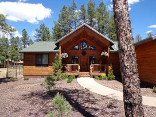 Exquisitely Decorated Mountain Retreat - Lakeside vacation rentals