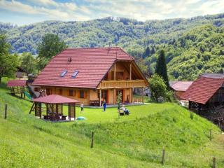APARTMANS PIRC - Lasko vacation rentals