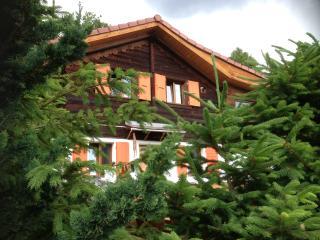 Chalet Andika - Nendaz vacation rentals
