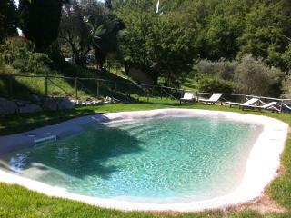 Un piccolo agriturismo vicino a Firenze - Pontassieve vacation rentals