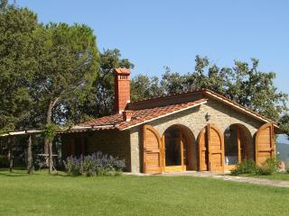The Hut. Villa with pool - San Giustino Valdarno vacation rentals