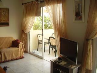 Kissonerga Sunset 8 - Kissonerga vacation rentals