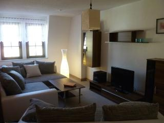 Vacation Apartment in Schwarzenberg - 786 sqft, comfortable, modern, exclusive (# 5240) - Oberwiesenthal vacation rentals