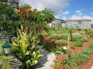Adegas do Pico 3BedroomHouse - Pico vacation rentals
