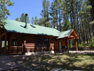 Secluded cozy cabin for two - Durango vacation rentals