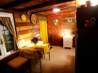 Grazioso Appartamentino In Trifamiliare Indipendente - Fiumicino vacation rentals