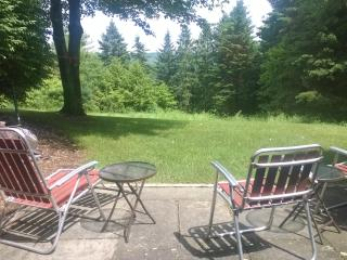 Relaxing 3RB 2.5BA  townhouse in beautiful Quechee - Quechee vacation rentals