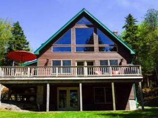 #138 Remodeled lodge with loads of cabin - Greenville vacation rentals