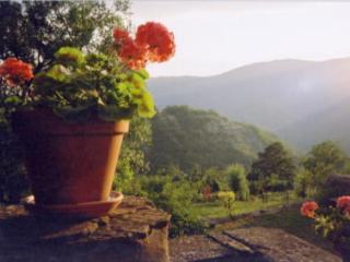 Pischiano - Sansepolcro vacation rentals