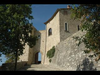 Extraordinary Tower in the Tuscan hills with pool, terrace and garden - Sansepolcro vacation rentals