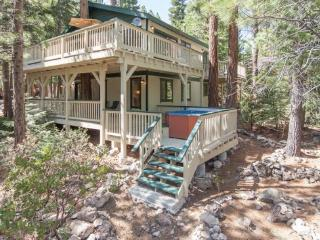 Forest Retreat Tahoe Rental - Dog Friendly,Hot Tub - Carnelian Bay vacation rentals