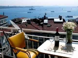 Old City & Bos.Vus n Best Area-C2, 50% off winter - Kozakli vacation rentals