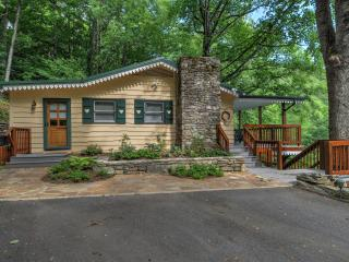 Swiss Cottage-Amazing Views - Waynesville vacation rentals