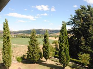 Cosy apartment in villa, Siena, pool and garden - Montalcino vacation rentals