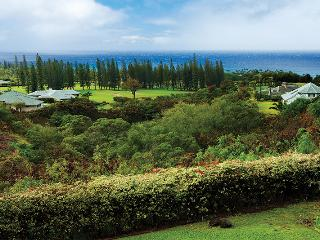 JULY - AUGUST 2015 SPECIAL - 4 Bedroom / 4.5 Bath - Kapalua vacation rentals