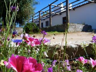 RELAXING GETAWAY - Évora vacation rentals