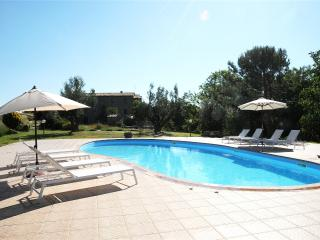 Naioli Farm holidays, Merlot apartment - Pitigliano vacation rentals