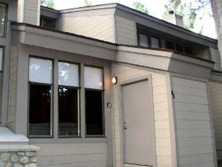 Nice Vacation Condo - Mammoth Lakes - Mammoth Lakes vacation rentals