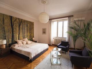 Central Square Apartment Terazije/Square of Nikola Pasic - Serbia vacation rentals