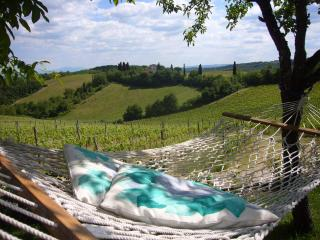 Exclusive and reserved in Chianti - Quercia - Chianti vacation rentals