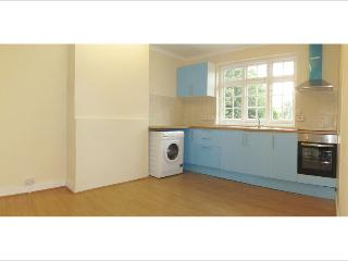 2bed apt in wimbledon, 10mins from tennis - London vacation rentals