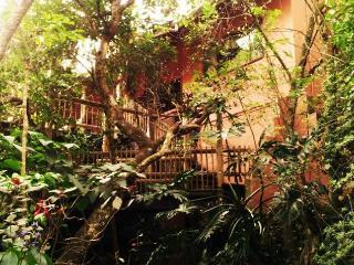 Assagay Forest Lodge - KwaZulu-Natal vacation rentals