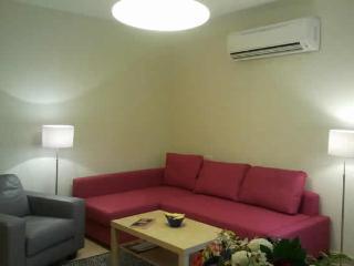 Remodled and comfertable 1 bedroom apartment in Emek Refaim - Jerusalem vacation rentals