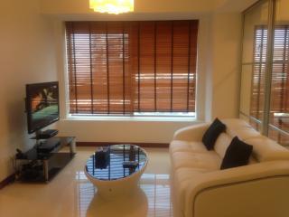 Marina Bay 2 Bedroom Apartment - Singapore vacation rentals