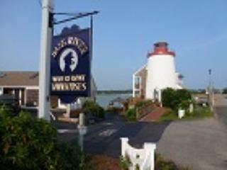 Carolyn's Bass River Vacation Townhome - stunning - South Yarmouth vacation rentals