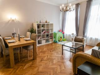 Beautiful apt 150m from Old Town Sq for 2-6 w/balc - Prague vacation rentals