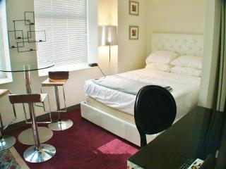Studio Millennium Park Chicago; perfect location - Chicago vacation rentals