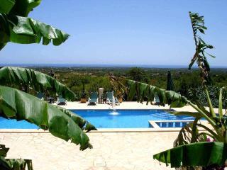 FINCA CAN ROCA. SANTANYI MALLORCA - Cas Concos vacation rentals
