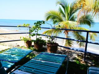 Beachfront  Corcega Beach 2 BR/2BA with Dune Deck - Rincon vacation rentals