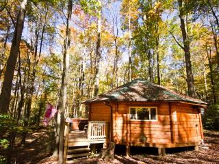 Yurt - Love Shack - Hico vacation rentals