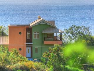 Stunning Ocean & Mountain Views - Bocean Villa - Anse Cochon vacation rentals