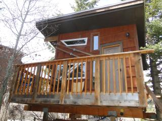 Cozy Heated Tree House in heart of Ketchum - Sun Valley / Ketchum vacation rentals