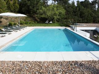 Douro Villa - Ancede vacation rentals