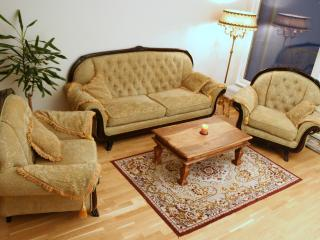 GUEST APARTMENT IN CENTER. 2-ROOMS AND WITH SAUNA - Tallinn vacation rentals