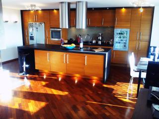 Large modern 130m2 flat overlooking lake&mountains - Belmont-sur-Lausanne vacation rentals