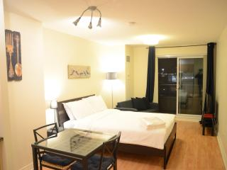 Scarborough Centre Luxury Business Suite (Studio) - Toronto vacation rentals