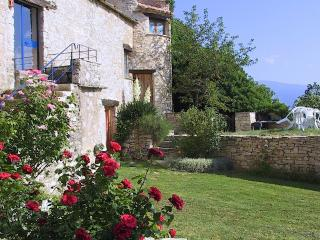 The Main House - Forcalquier vacation rentals