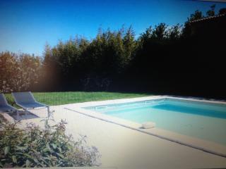 Villa des 2 oliviers - Le Paradou vacation rentals