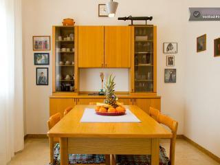 Single Family House Pordenone - Pordenone vacation rentals