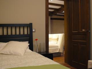 Turistic Apartment-NoEsAmargo - Toledo vacation rentals