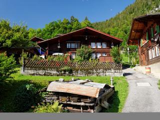 Chalet Daheim - Lauterbrunnen vacation rentals