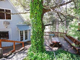 Libecki/Stephens (Fri-Fri) 10p - Bass Lake vacation rentals