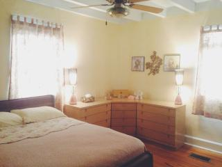 Cozy 2-1 Apartment in Downtown - Biloxi vacation rentals