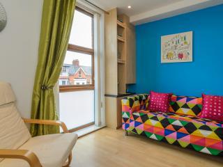 2 BR Apartment close to city centre Belfast - Belfast vacation rentals