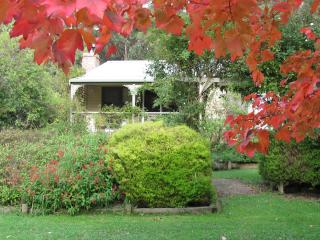 Barham Hill Retreat - Apollo Bay vacation rentals